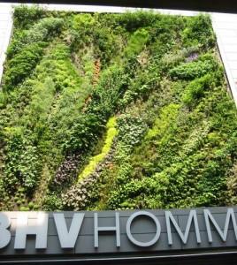 Vertikalgarten nowaks n hk stchen - Vertikaler wandgarten ...