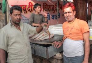 Fischhändler Jaipur