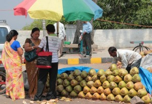 Coconut Water at Chamundi Hill