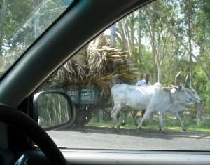Indische Autobahn