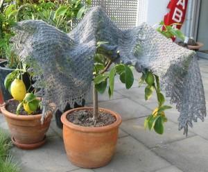 Shetland Shawl aus Victorian Lace today