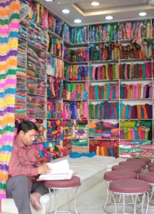 Sarishop in Udaipur